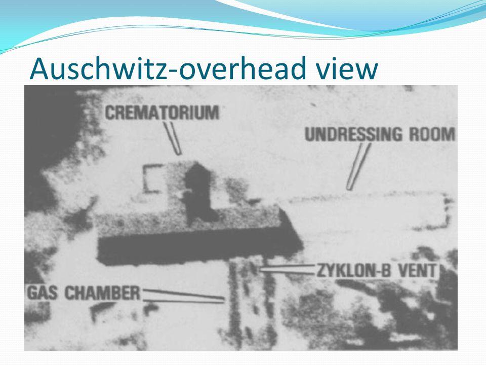 Auschwitz-overhead view