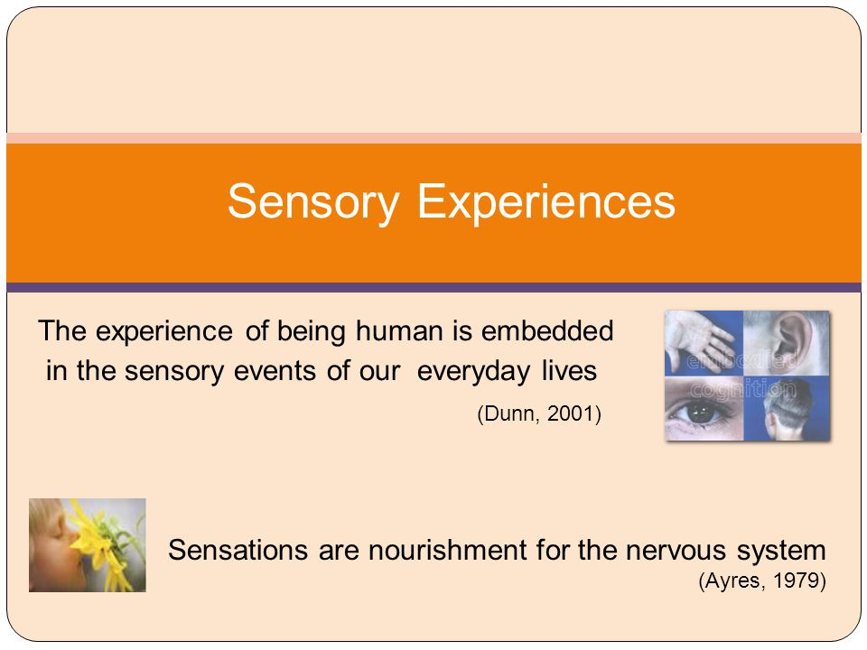 Early Foundations: Sensory Integration Sensory processing disorders were identified in the 1960's by Dr.