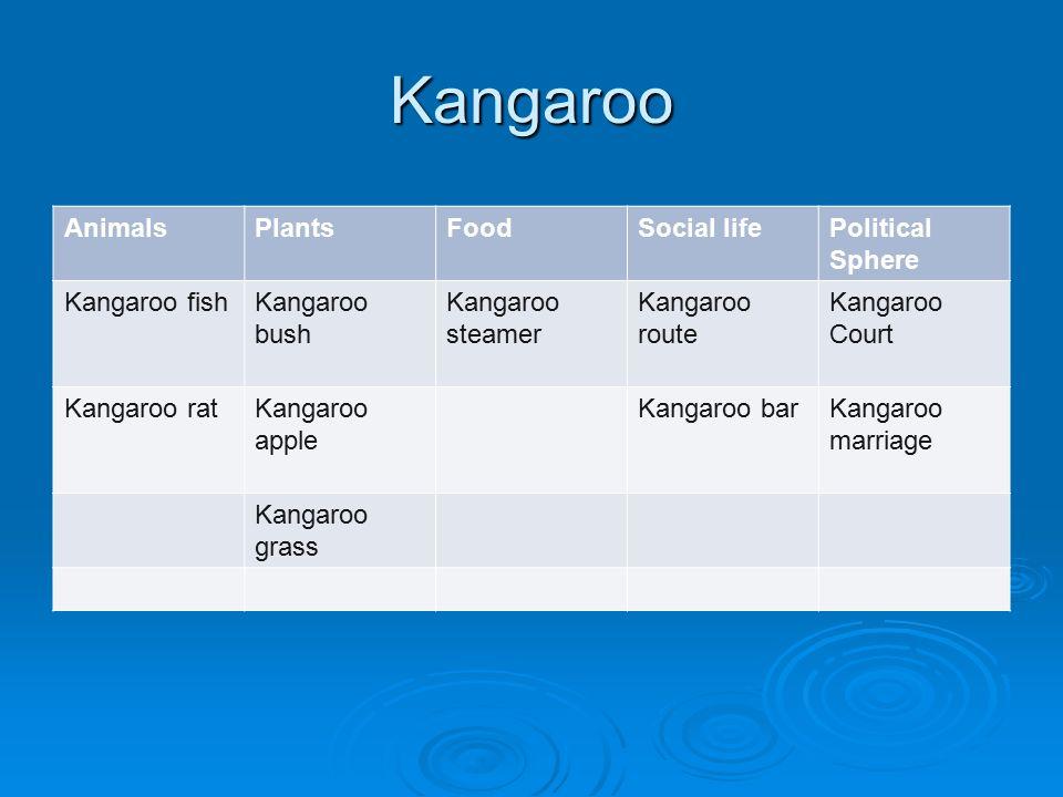 Kangaroo AnimalsPlantsFoodSocial lifePolitical Sphere Kangaroo fishKangaroo bush Kangaroo steamer Kangaroo route Kangaroo Court Kangaroo ratKangaroo apple Kangaroo barKangaroo marriage Kangaroo grass