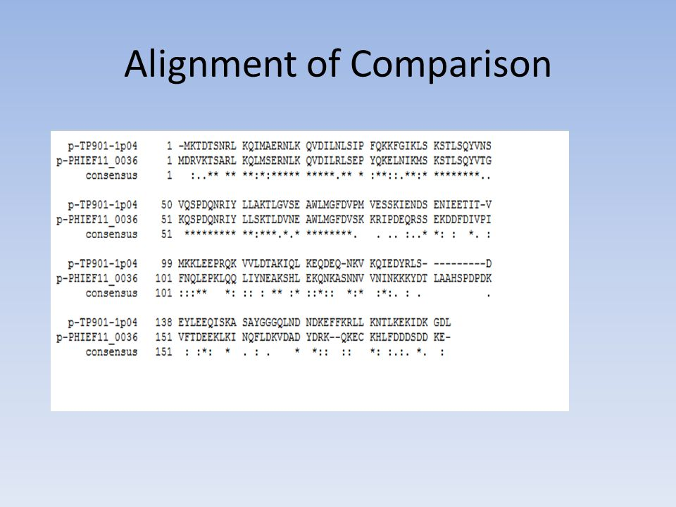 Alignment of Comparison