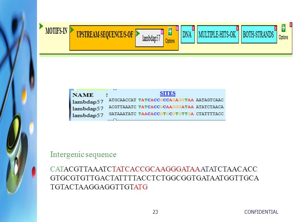 CONFIDENTIAL23 Intergenic sequence CATACGTTAAATCTATCACCGCAAGGGATAAATATCTAACACC GTGCGTGTTGACTATTTTACCTCTGGCGGTGATAATGGTTGCA TGTACTAAGGAGGTTGTATG