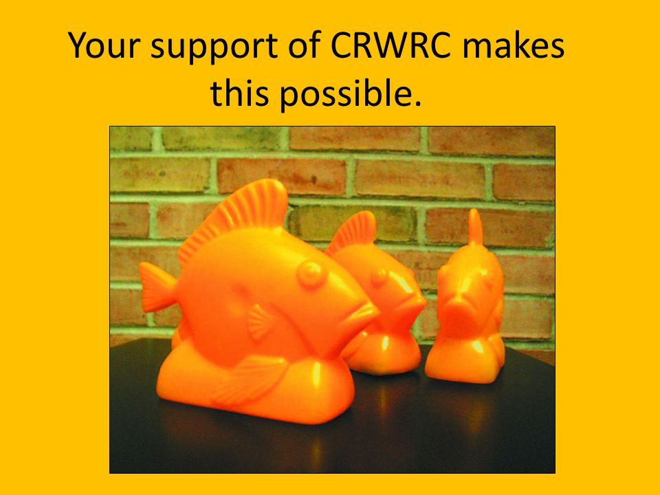 Your support of CRWRC makes this possible.