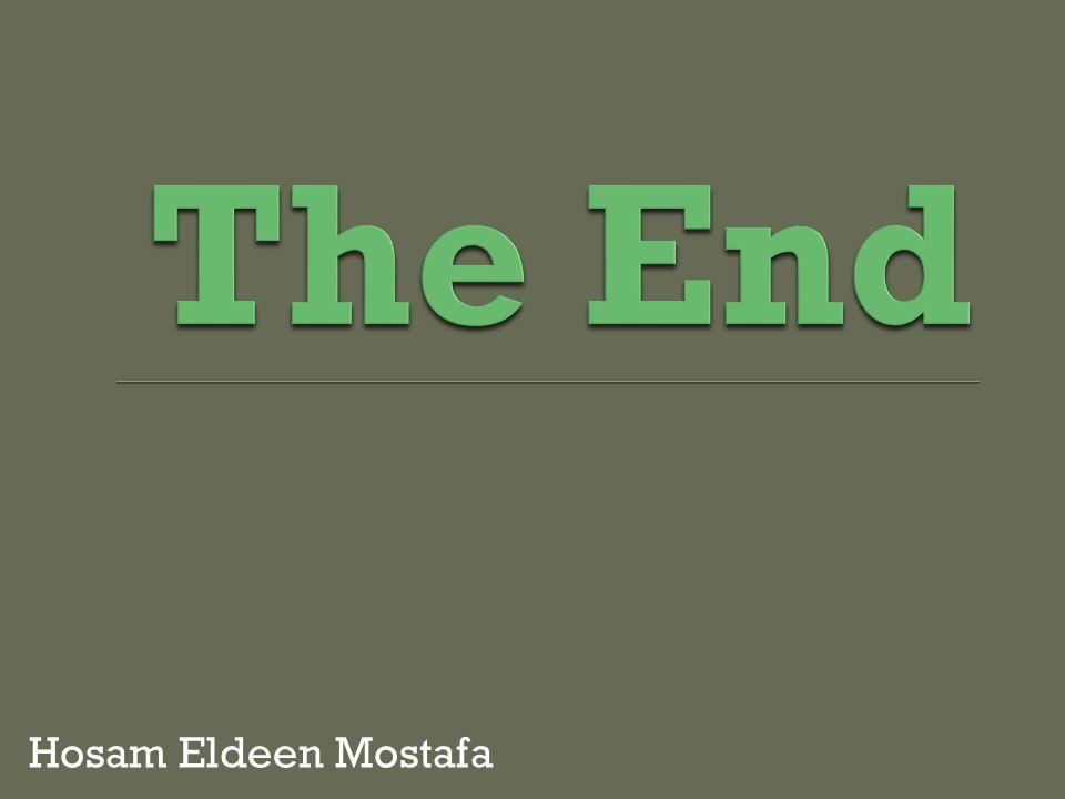 Hosam Eldeen Mostafa