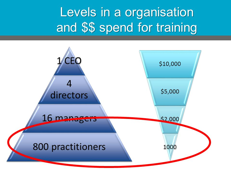 Levels in a organisation and $$ spend for training