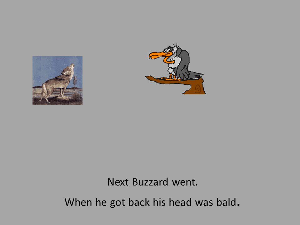 Next Buzzard went. When he got back his head was bald.