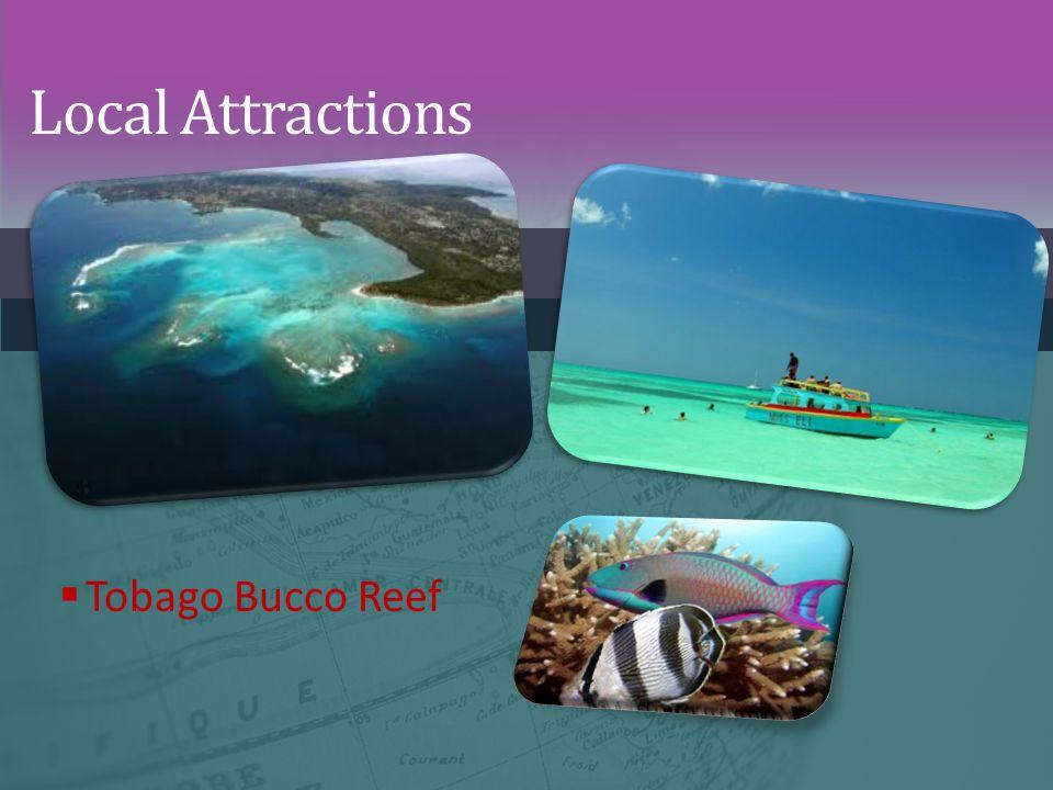Local Attractions  Tobago Bucco Reef