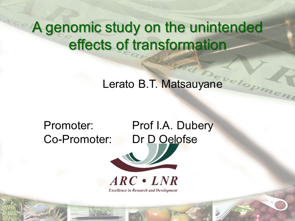A genomic study on the unintended effects of transformation Lerato B.T.