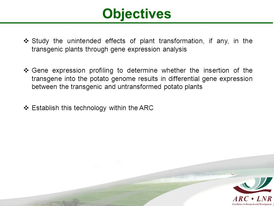 Objectives  Study the unintended effects of plant transformation, if any, in the transgenic plants through gene expression analysis  Gene expression profiling to determine whether the insertion of the transgene into the potato genome results in differential gene expression between the transgenic and untransformed potato plants  Establish this technology within the ARC