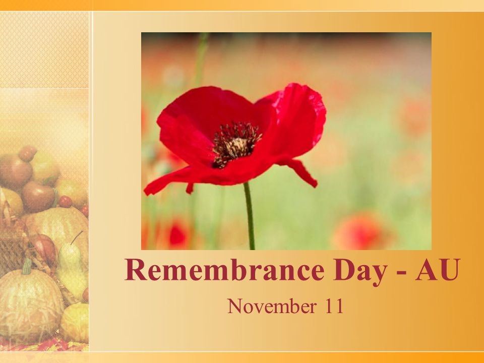 Remembrance Day - AU November 11