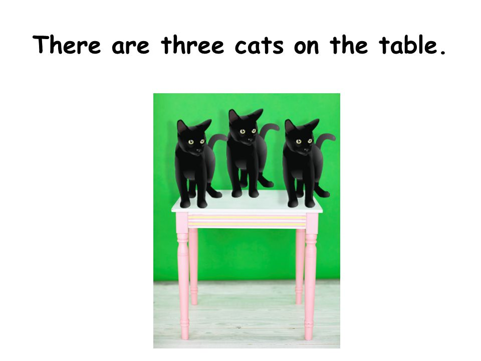 There are three cats on the table.