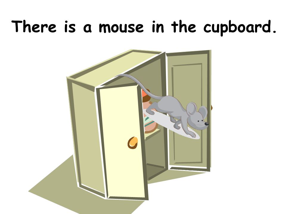 There is a mouse in the cupboard.