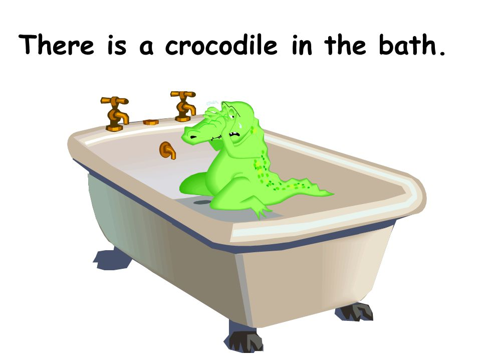 There is a crocodile in the bath.