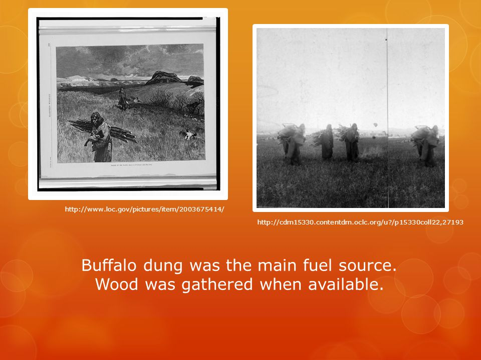 Buffalo dung was the main fuel source. Wood was gathered when available.