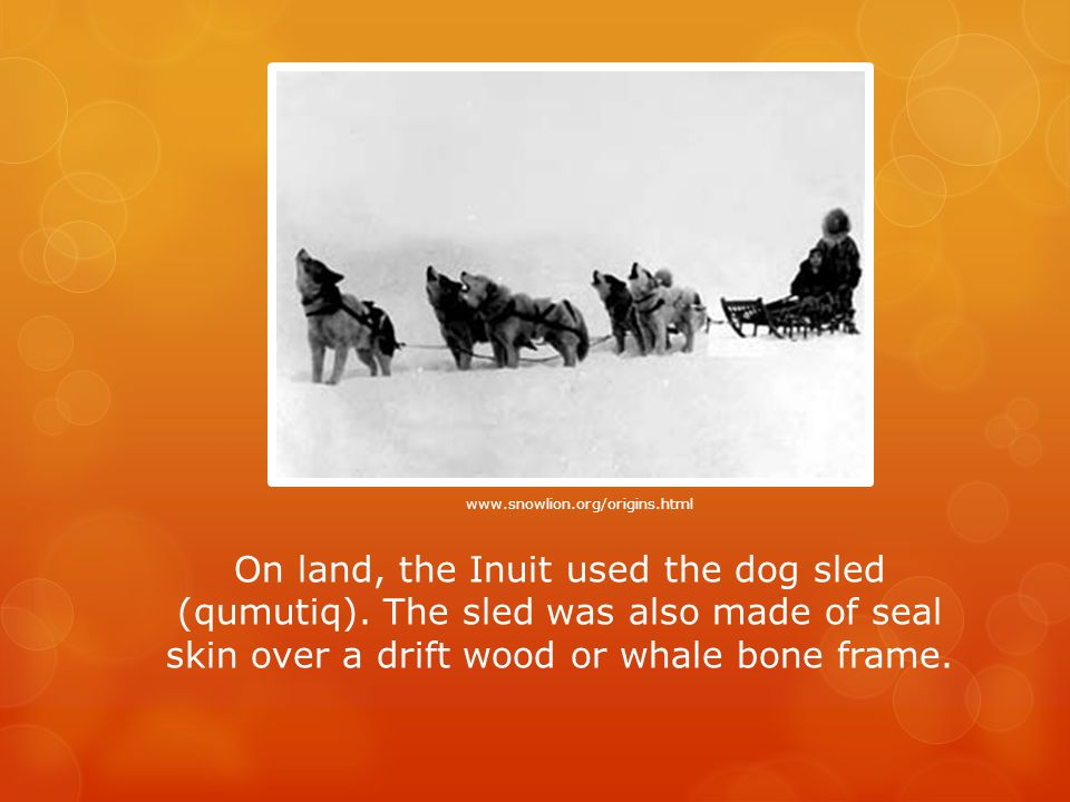 On land, the Inuit used the dog sled (qumutiq).