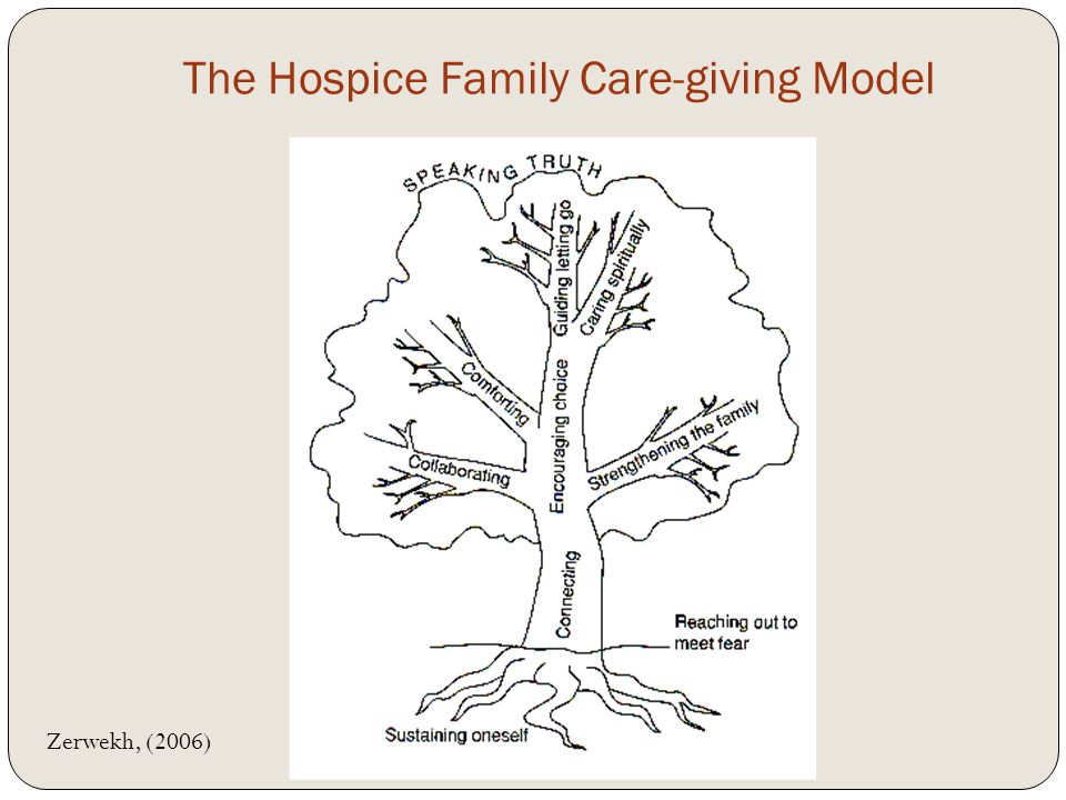 The Hospice Family Care-giving Model Zerwekh, (2006)
