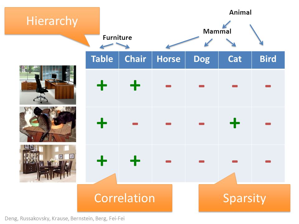 Deng, Russakovsky, Krause, Bernstein, Berg, Fei-Fei TableChairHorseDogCatBird ++---- +---+- ++---- Sparsity Correlation Furniture Mammal Animal Hierarchy
