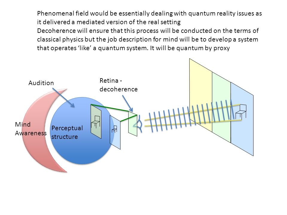 Phenomenal field would be essentially dealing with quantum reality issues as it delivered a mediated version of the real setting Decoherence will ensure that this process will be conducted on the terms of classical physics but the job description for mind will be to develop a system that operates 'like' a quantum system.