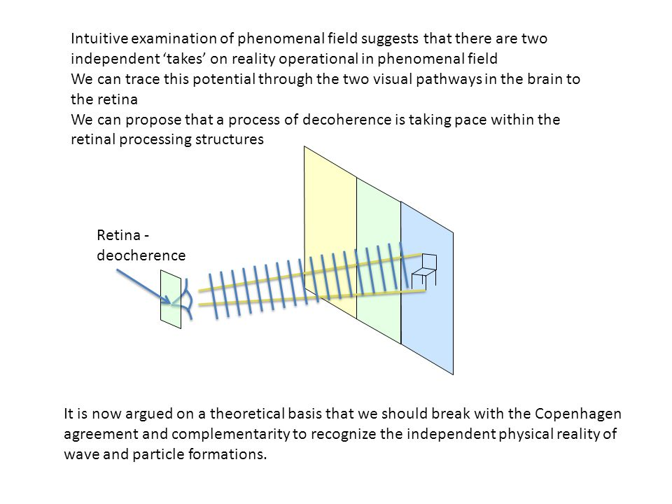 Intuitive examination of phenomenal field suggests that there are two independent 'takes' on reality operational in phenomenal field We can trace this