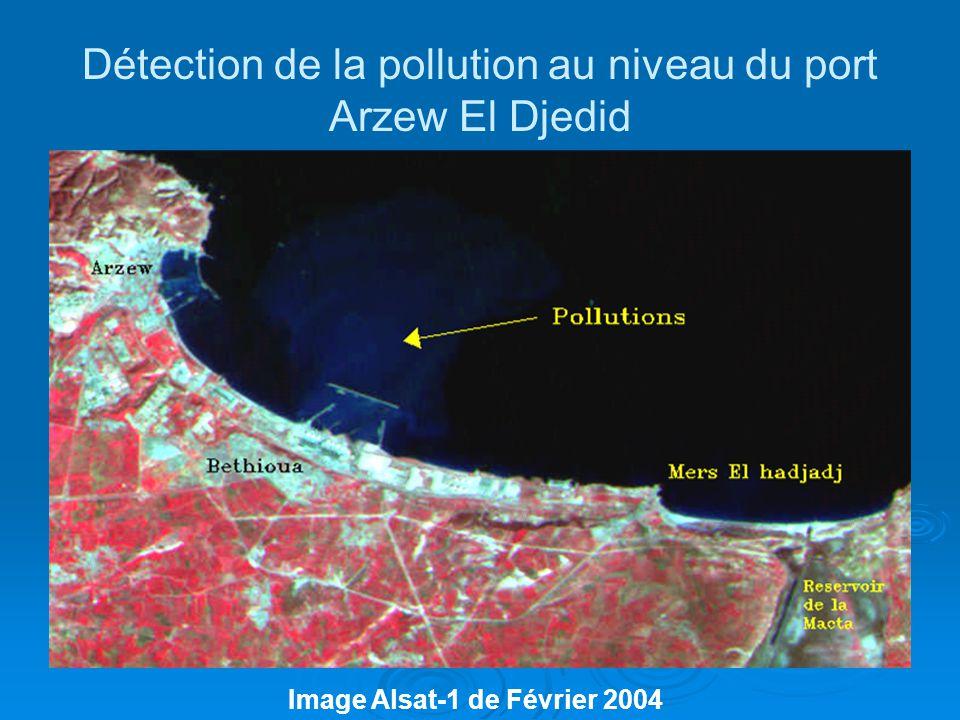 Détection de la pollution au niveau du port Arzew El Djedid Image Alsat-1 de Février 2004