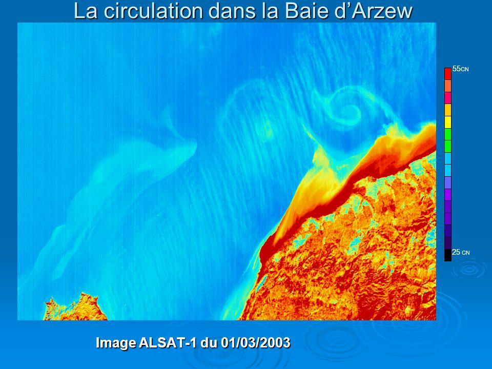 La circulation dans la Baie d'Arzew Image ALSAT-1 du 01/03/2003 ALSAT-1 25 CN 55 CN