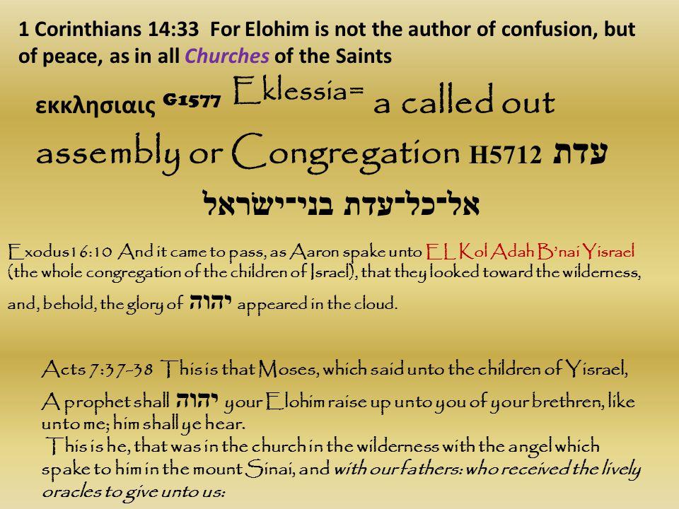 εκκλησιαις G1577 Eklessia= a called out assembly or Congregation H5712 עדת 1 Corinthians 14:33 For Elohim is not the author of confusion, but of peace