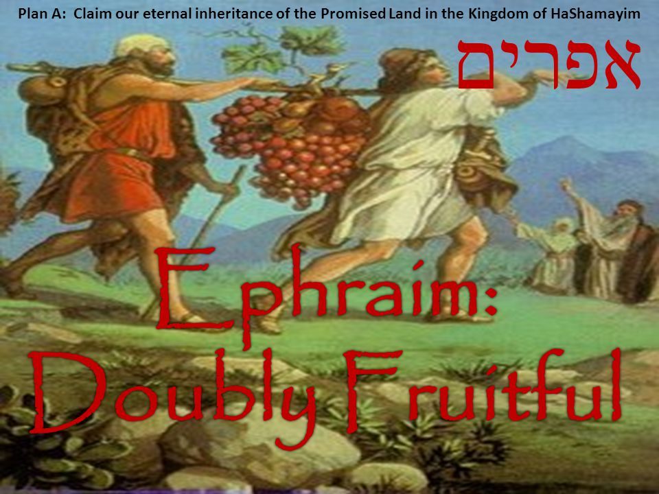 אפרים Plan A: Claim our eternal inheritance of the Promised Land in the Kingdom of HaShamayim