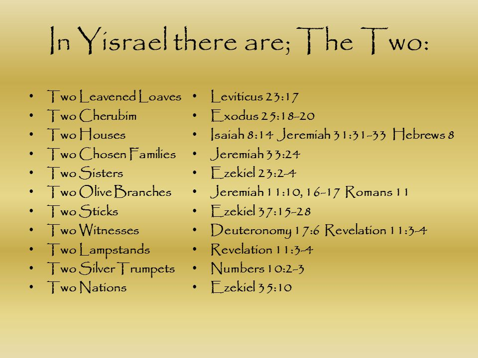 In Yisrael there are; The Two: Two Leavened Loaves Two Cherubim Two Houses Two Chosen Families Two Sisters Two Olive Branches Two Sticks Two Witnesses
