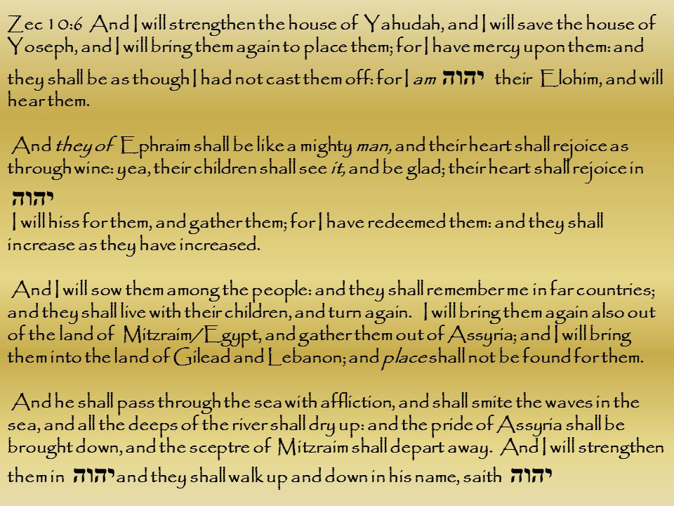 Zec 10:6 And I will strengthen the house of Yahudah, and I will save the house of Yoseph, and I will bring them again to place them; for I have mercy