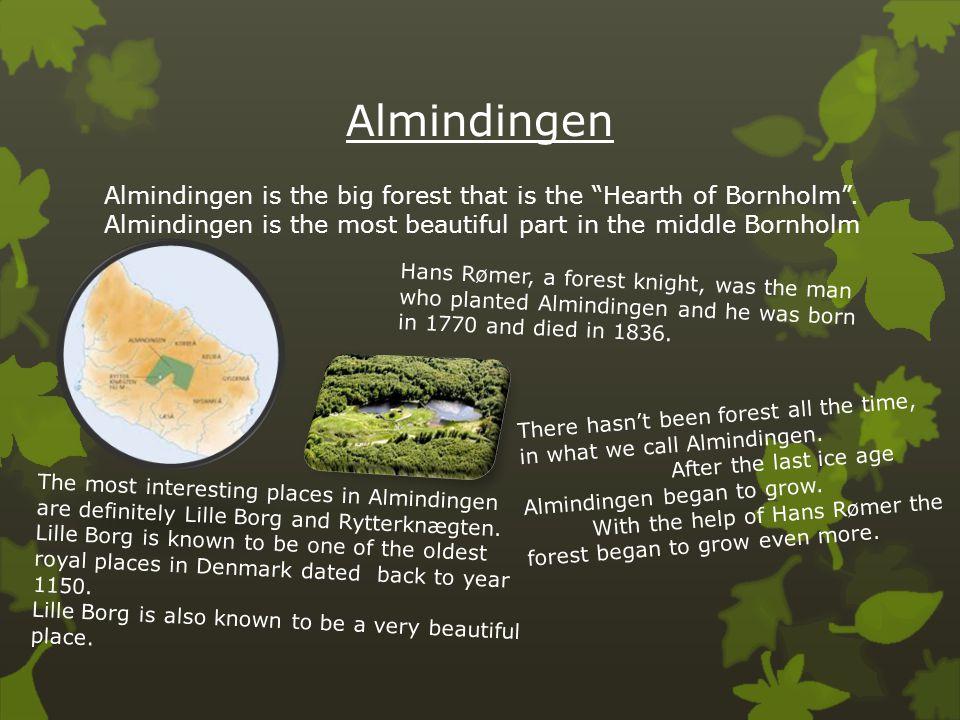 "Almindingen Almindingen is the big forest that is the ""Hearth of Bornholm"". Almindingen is the most beautiful part in the middle Bornholm Hans Rømer,"