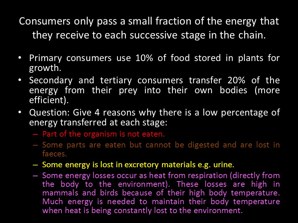 Energy transfer between trophic levels is relatively inefficient.