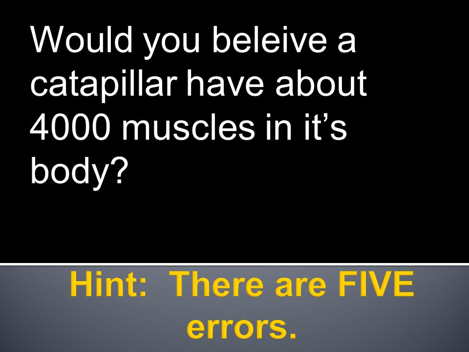Would you beleive a catapillar have about 4000 muscles in it's body