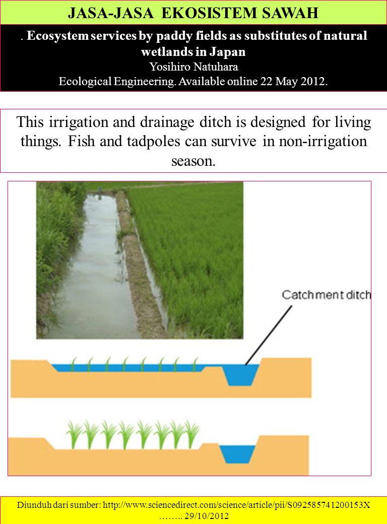 JASA-JASA EKOSISTEM SAWAH. Ecosystem services by paddy fields as substitutes of natural wetlands in Japan Yosihiro Natuhara Ecological Engineering. Av