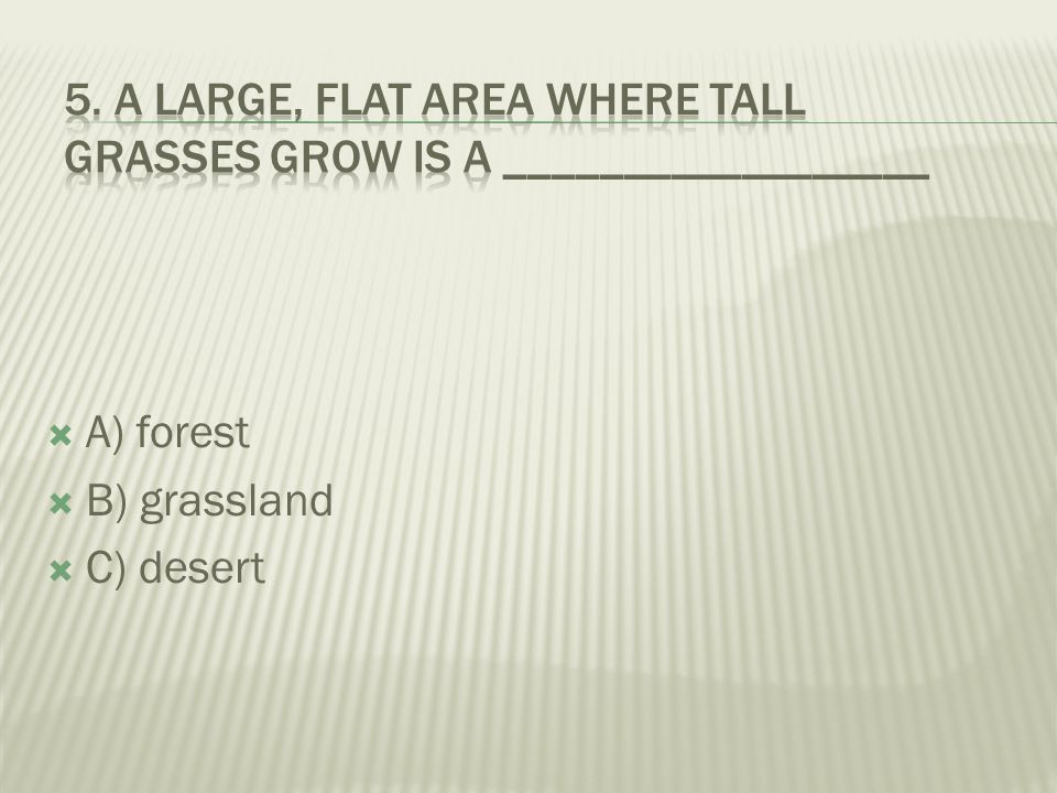  A) coastal forest