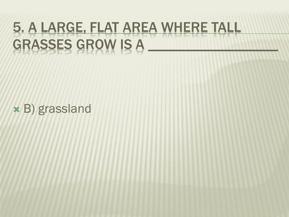  A) forest  B) grassland  C) desert
