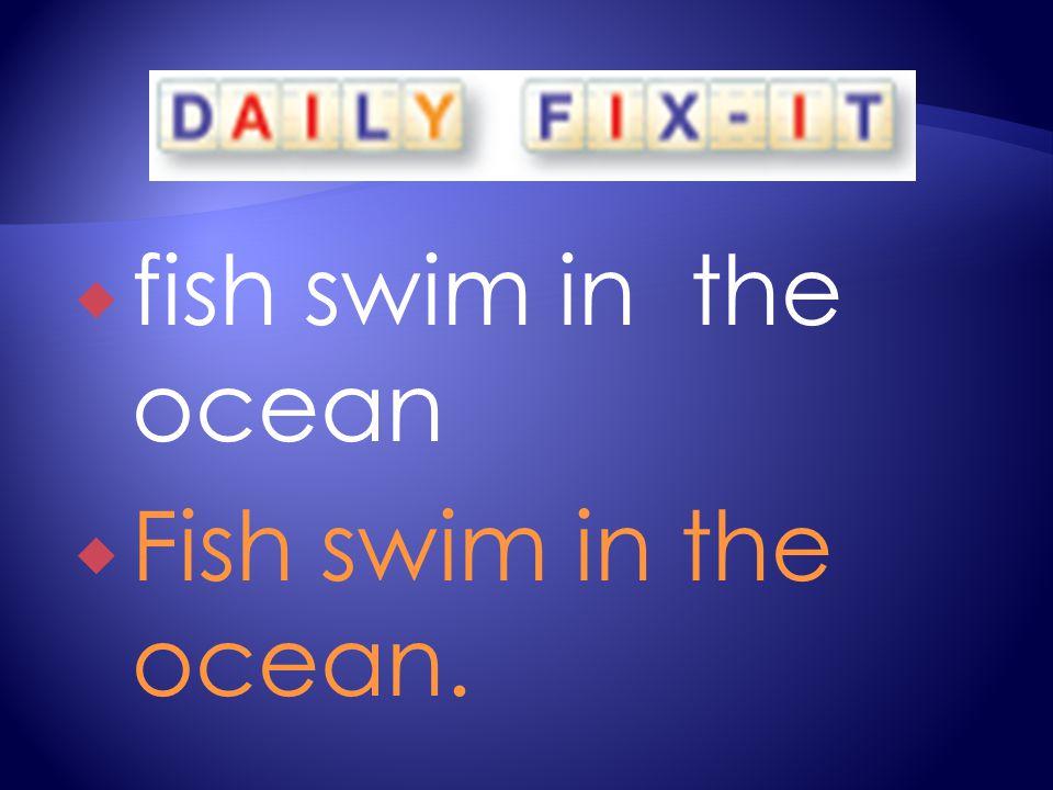  fish swim in the ocean  Fish swim in the ocean.