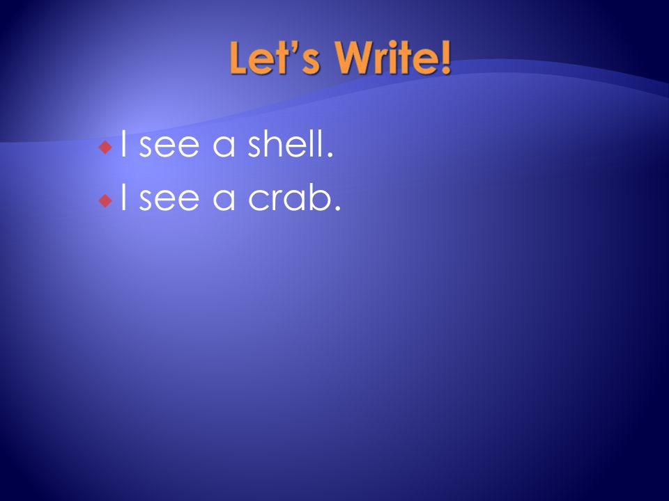  I see a shell.  I see a crab.