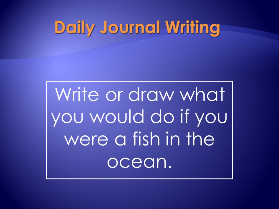 Write or draw what you would do if you were a fish in the ocean.