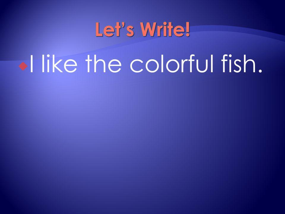  I like the colorful fish.