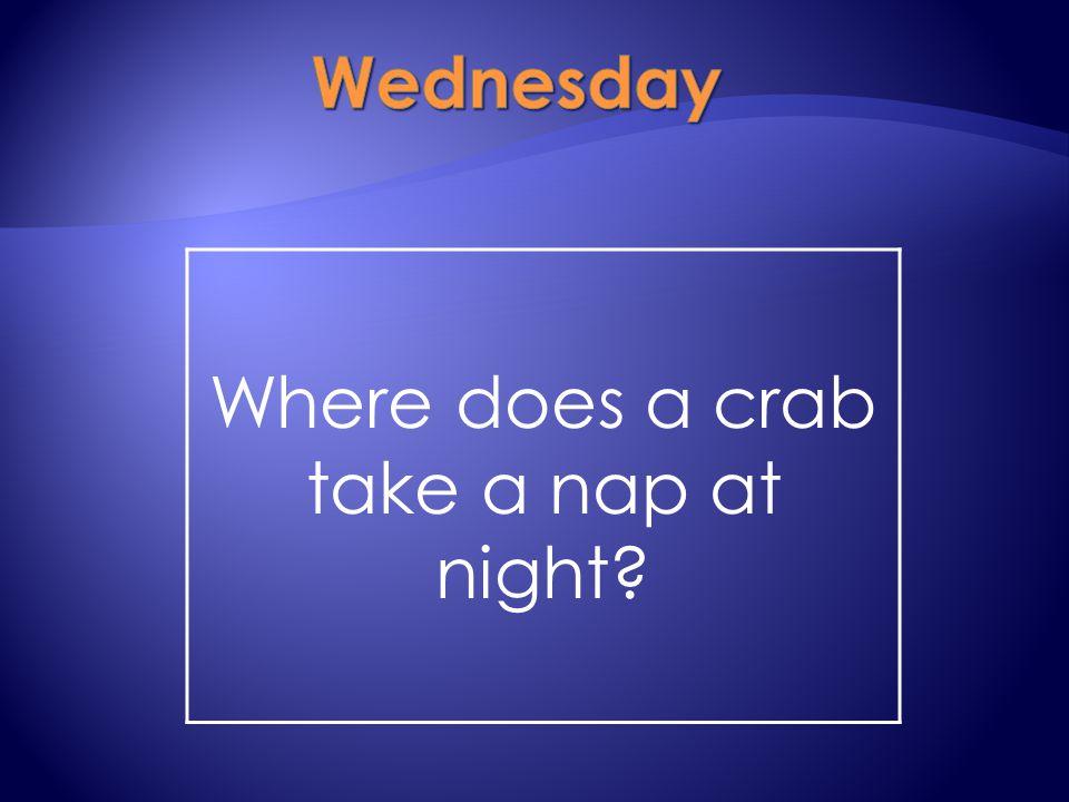 Where does a crab take a nap at night?