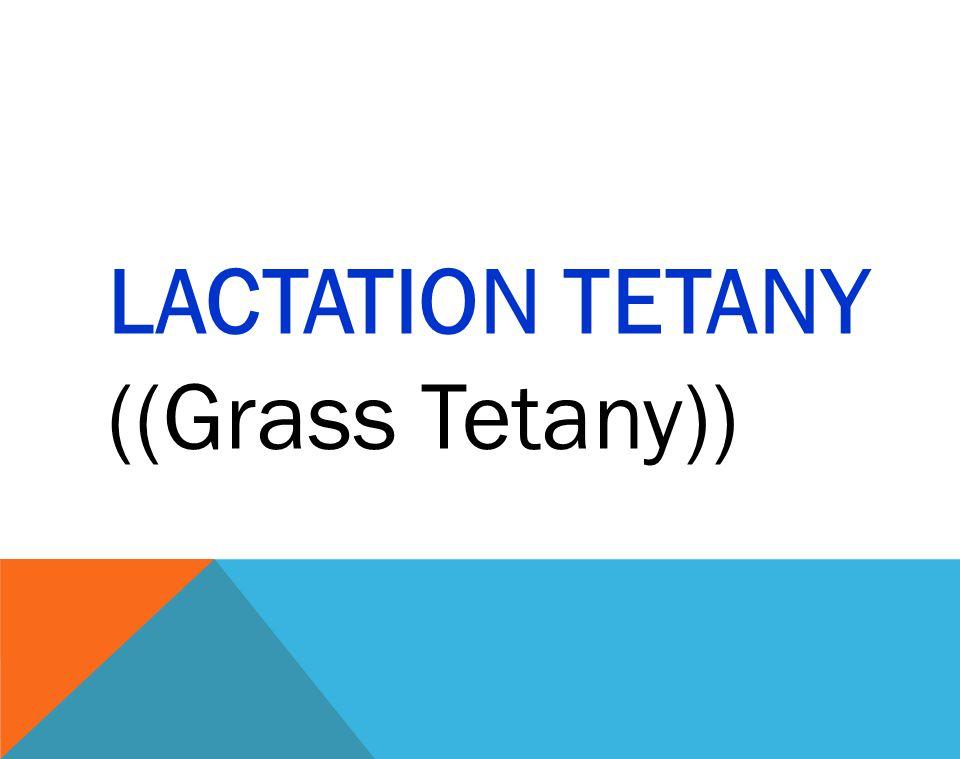 LACTATION TETANY ((Grass Tetany))