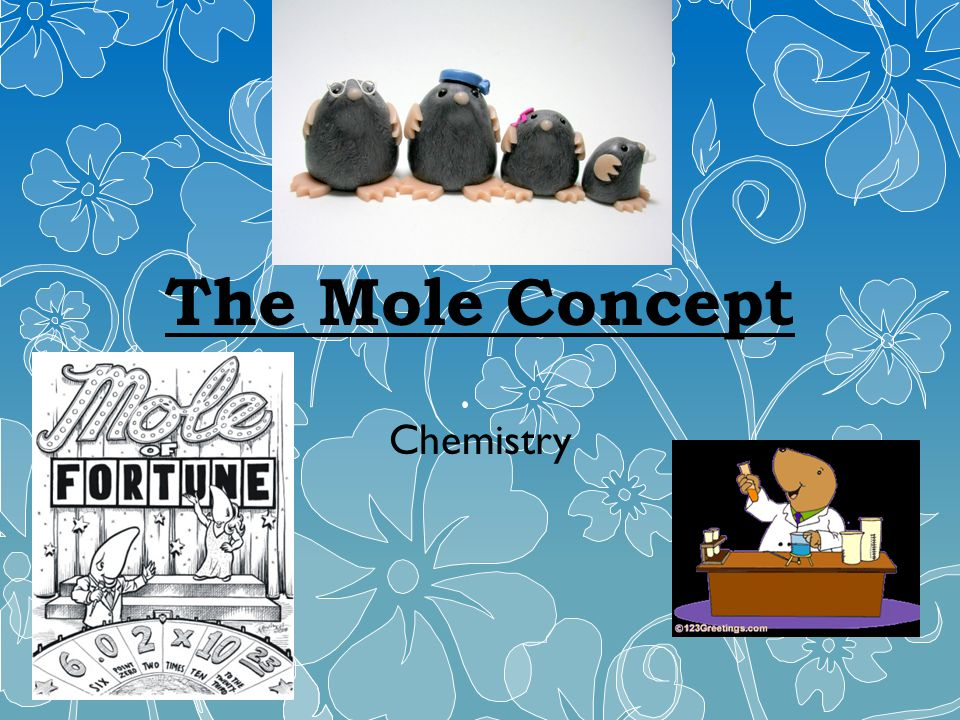 The Mole Concept Chemistry