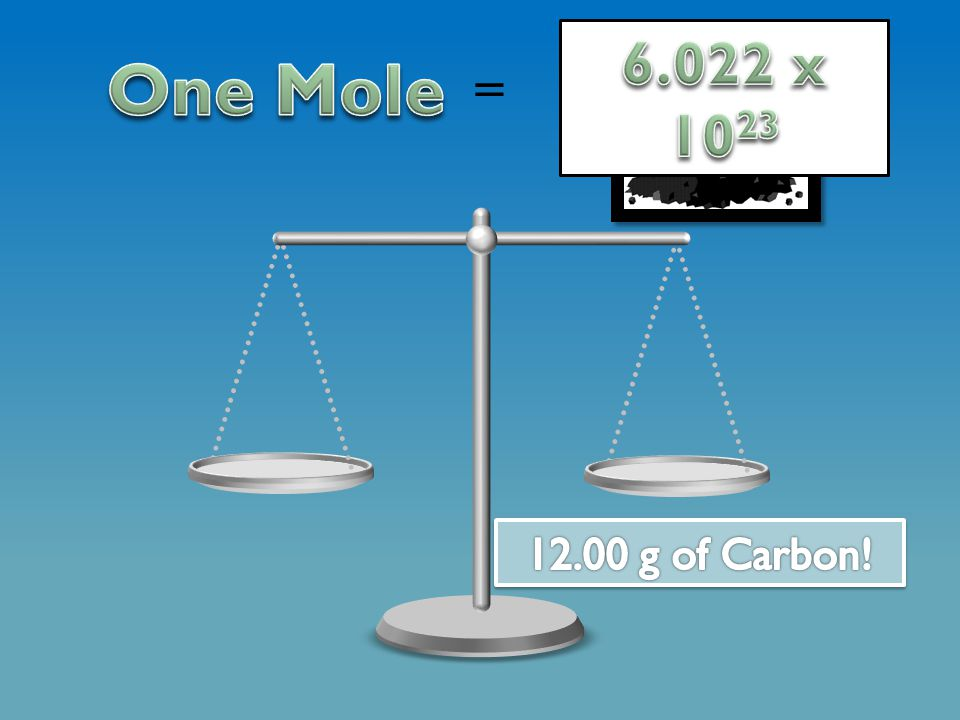 One mole can represent many things.