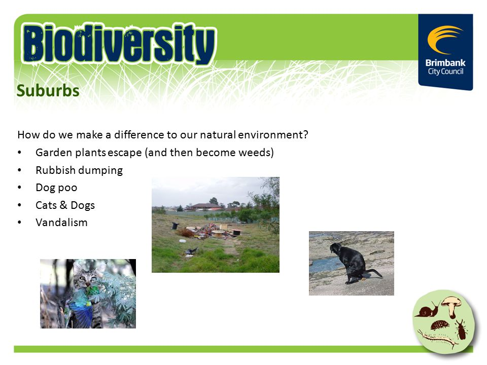 How do we make a difference to our natural environment.