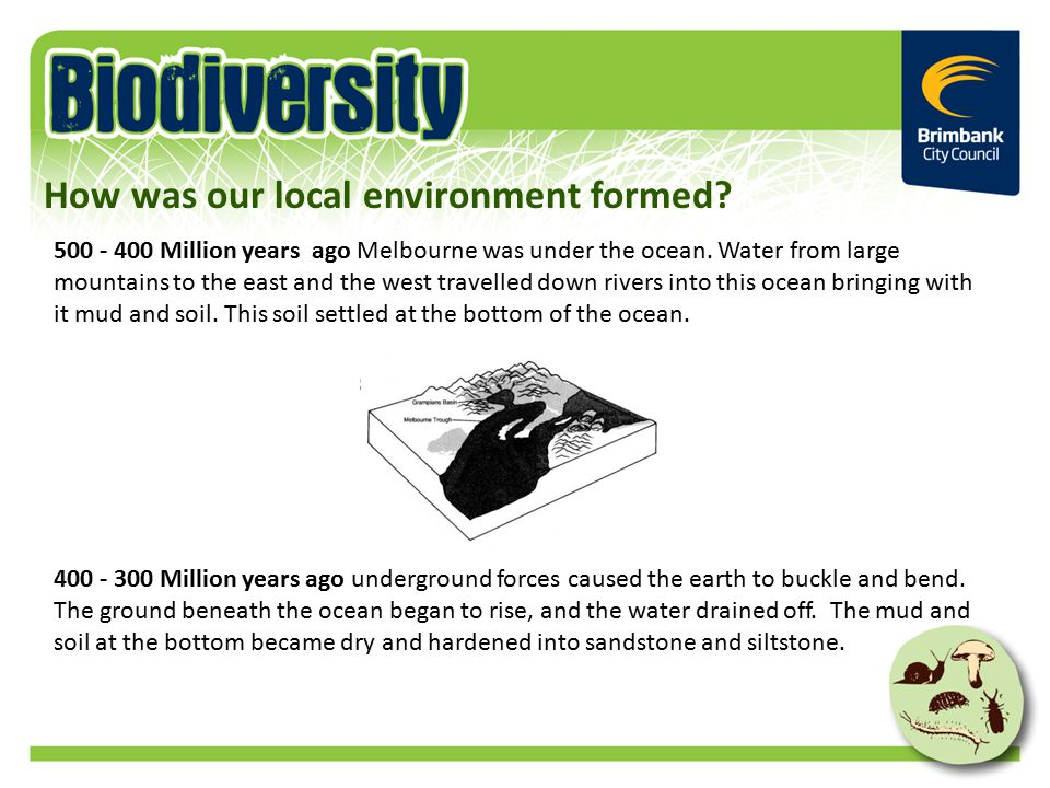 Million years ago Melbourne was under the ocean.
