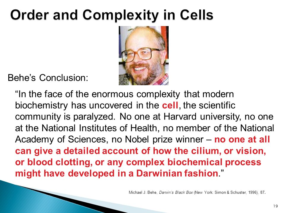 """Michael J. Behe, Darwin's Black Box (New York: Simon & Schuster, 1996), 87. 19 Behe's Conclusion: """"In the face of the enormous complexity that modern"""