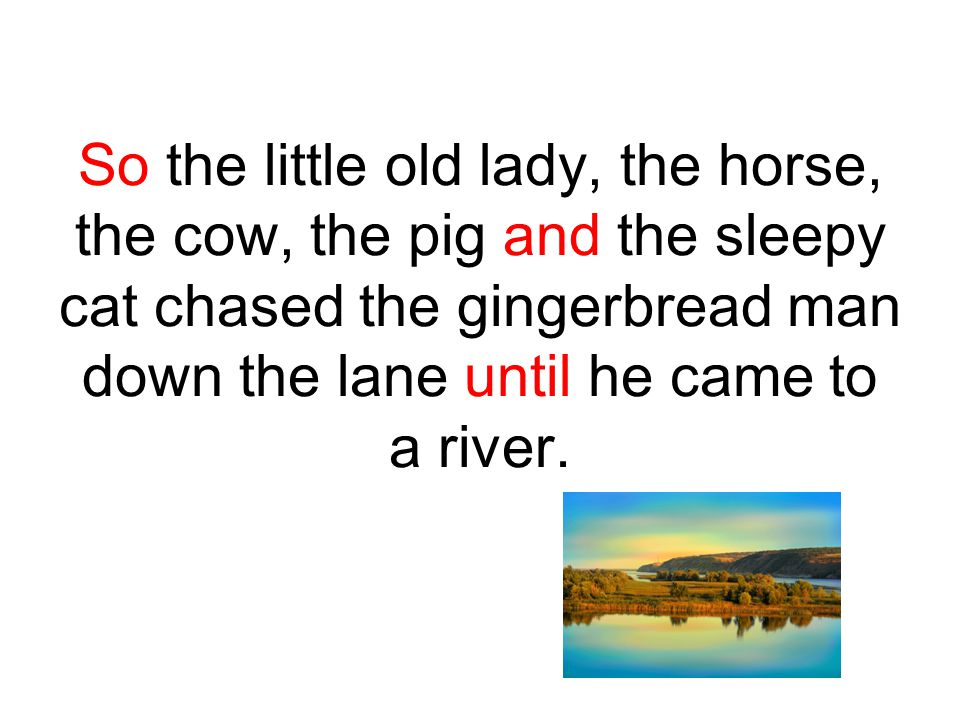 So the little old lady, the horse, the cow, the pig and the sleepy cat chased the gingerbread man down the lane until he came to a river.