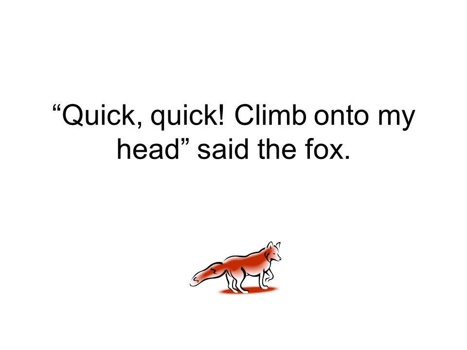 """Quick, quick! Climb onto my head"" said the fox."