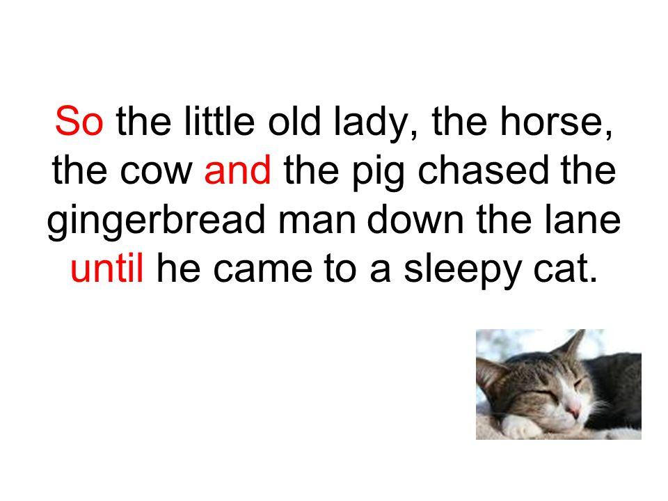 Stop, stop! cried the sleepy cat.