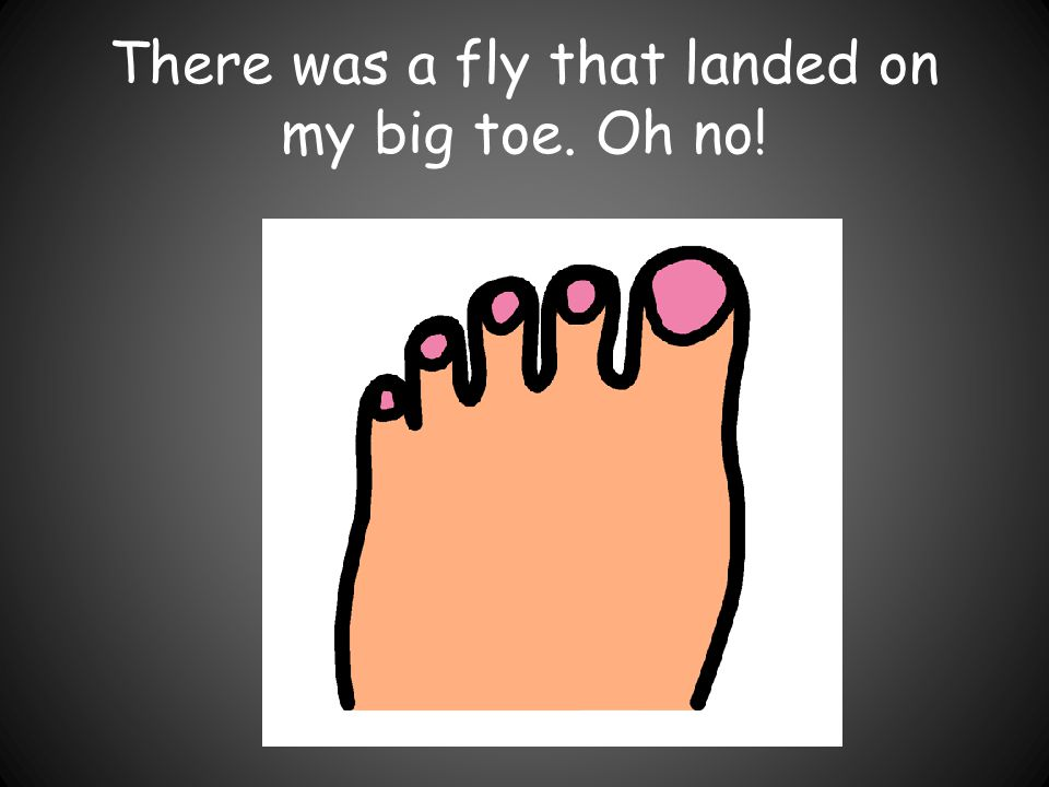 There was a fly that landed on my big toe. Oh no!