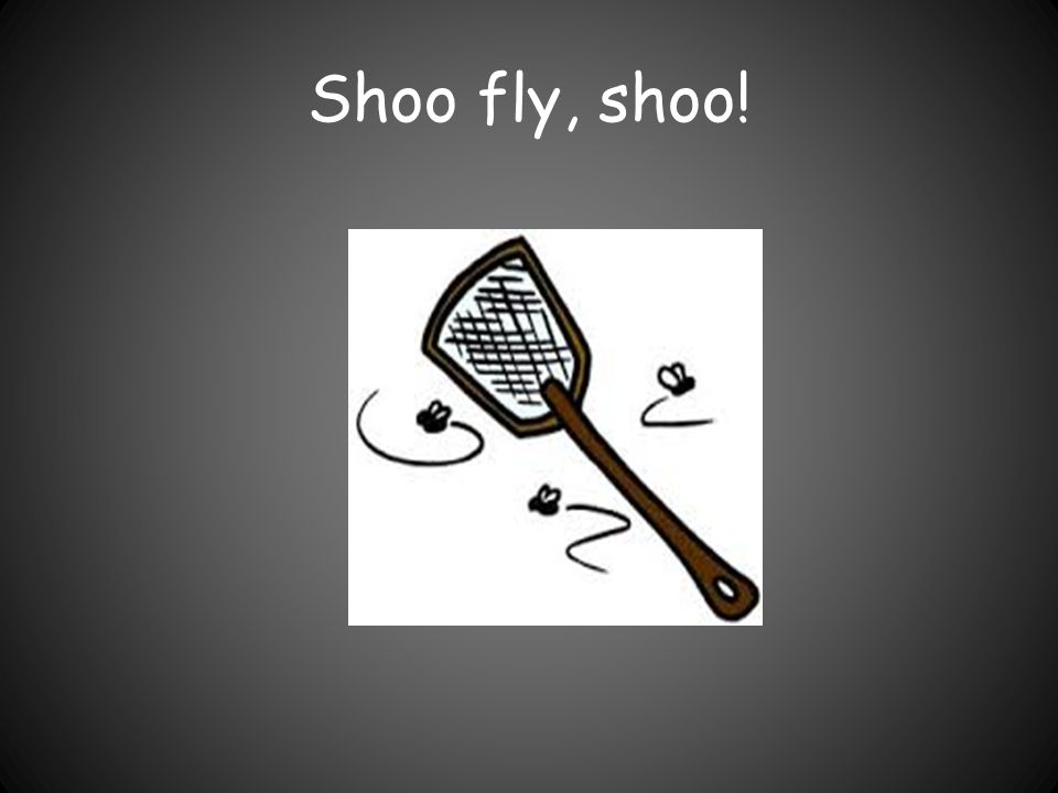Shoo fly, shoo!